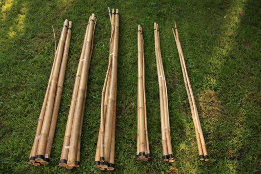 Bambusstange 3 - 8 m